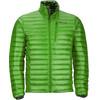 Marmot M's Quasar Nova Jacket Lucky Green